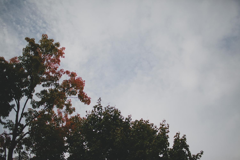 ZastrowFamilyBlog_0032.jpg