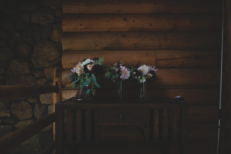 Aldo Leopold Nature Center Wedding _0009.jpg