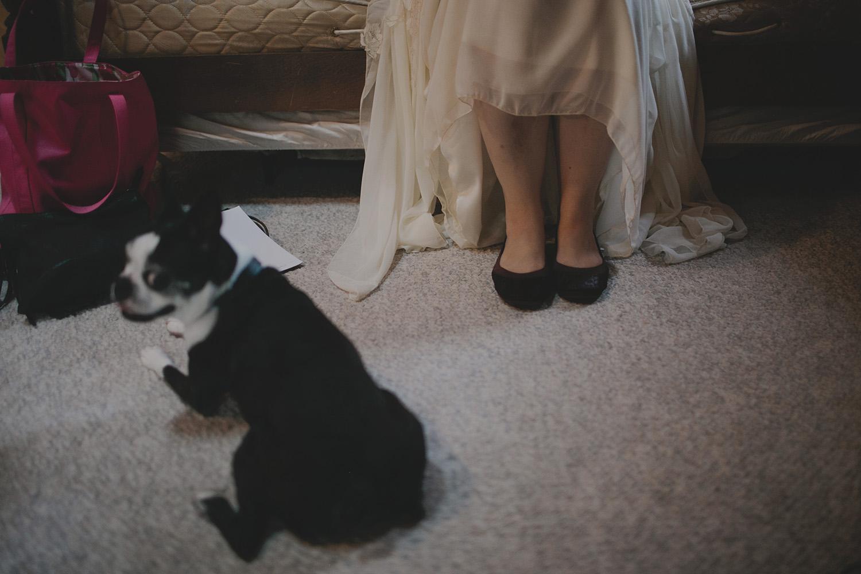 Aldo Leopold Nature Center Wedding _0018.jpg