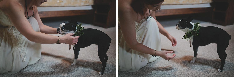 Aldo Leopold Nature Center Wedding _0021.jpg