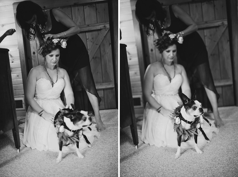Aldo Leopold Nature Center Wedding _0024.jpg