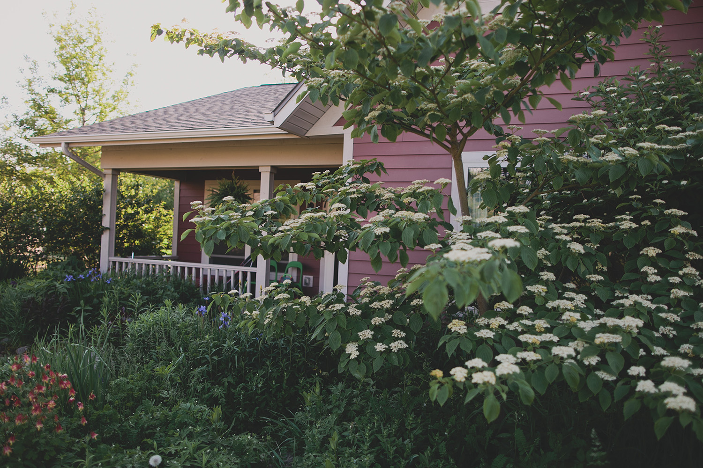 Madison documentary family photography_0001.jpg