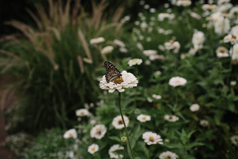 Chicago Botanic Gardens Indian Wedding 018.jpg
