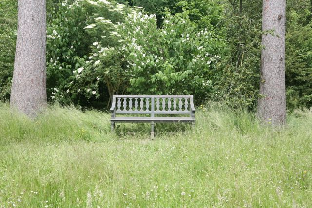 A bench is a classic way to signal a destination.  Imagine this scene without the bench - just another woodland border.  The bench invites us to pause and take in the view. Versailles, France.