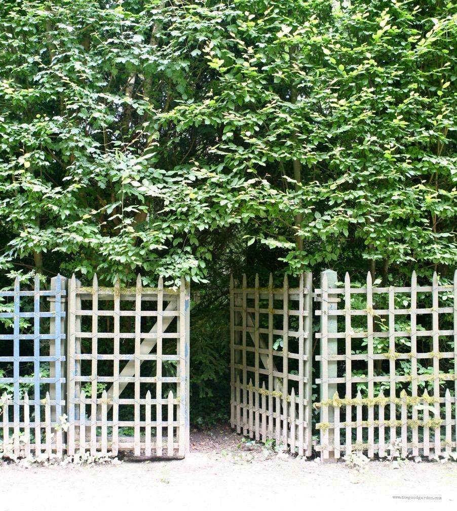 thegoodgarden|Versailles|formal|8721.jpg