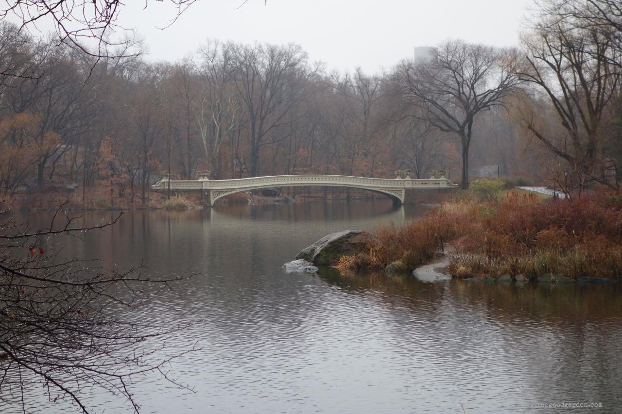 thegoodgarden|centralpark|NYC|4562.jpg