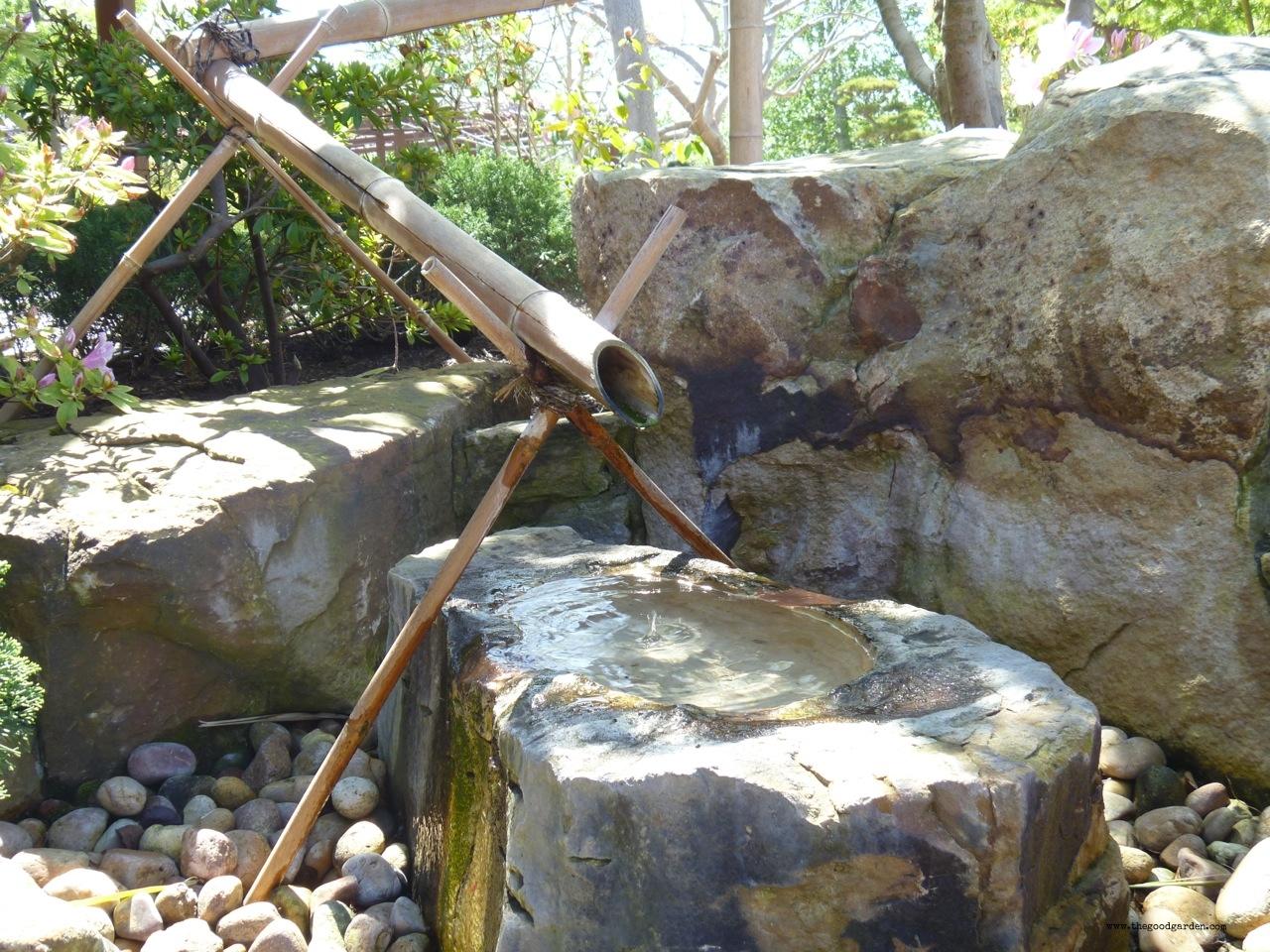 thegoodgarden|balboapark|sandiego|0137.jpg