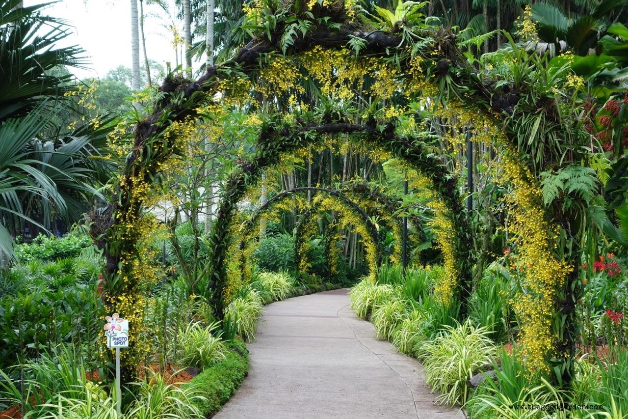 thegoodgarden|singapore|01400.jpg