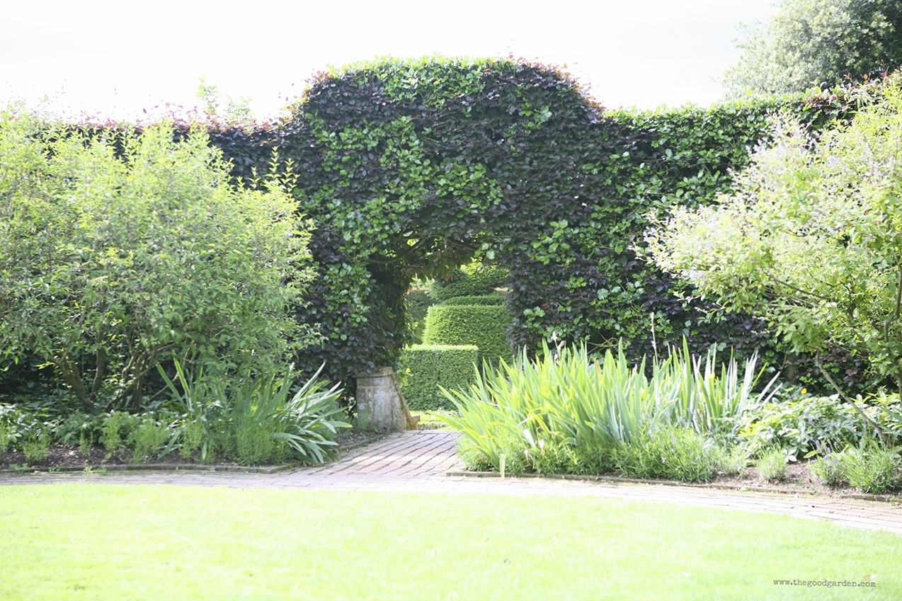 Hedge of holly and hornbeam, in both regular and copper varieties, at the garden at Hidcote. Gloucestershire, England.