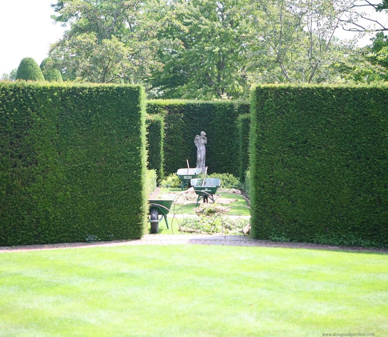 Yew in simple, rectangular shapes framea garden at Sissinghurst Castle, Kent, England.