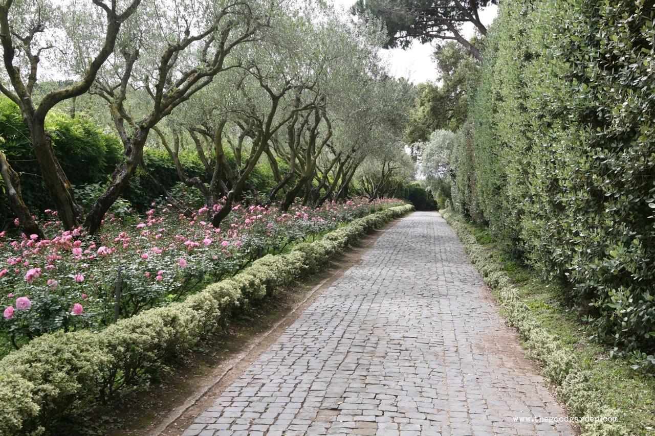 thegoodgarden|landriana|russellpage|4261.jpg