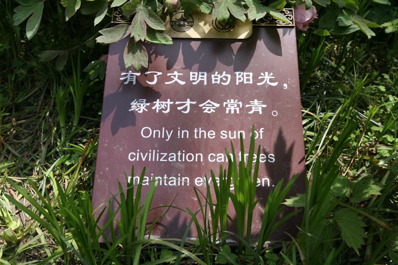 thegoodgarden|chinesegardensayings|_5910.jpg