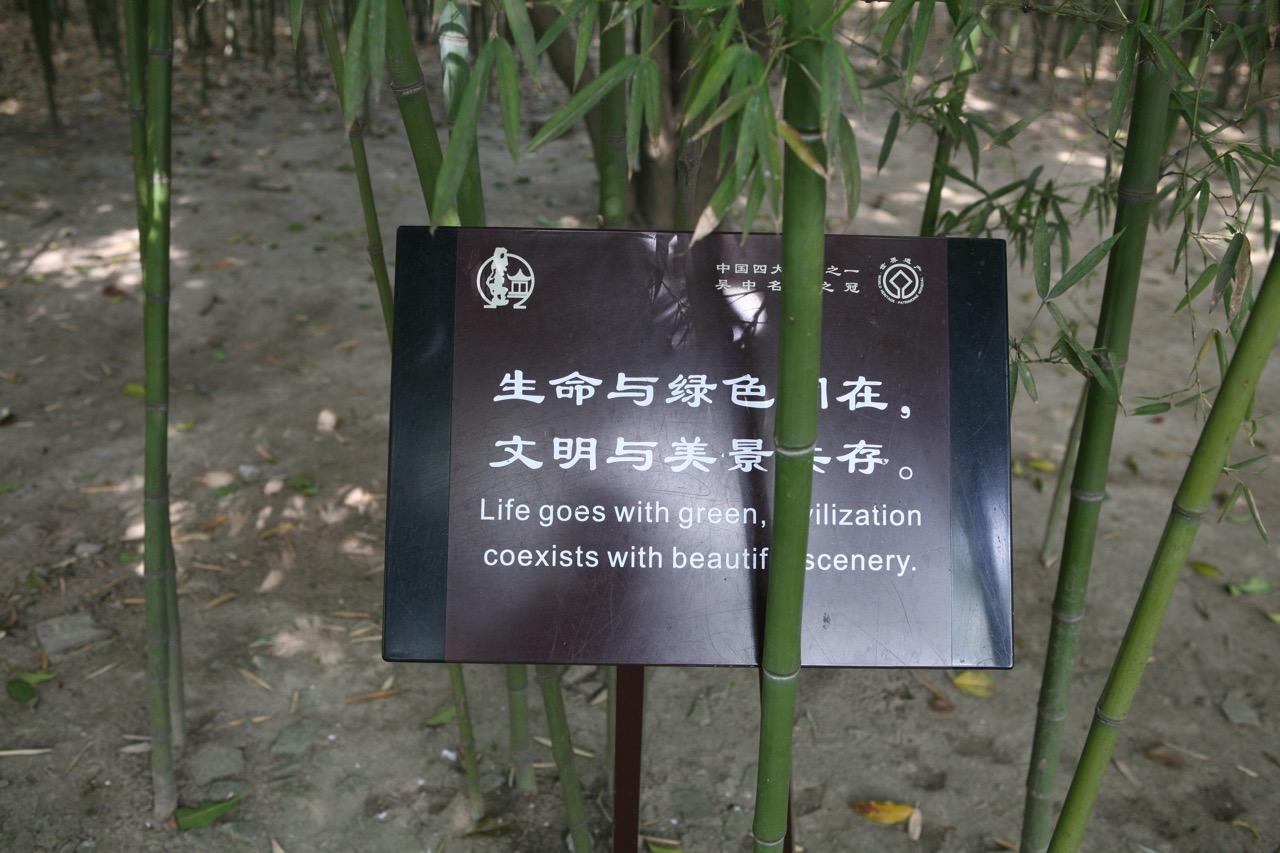 thegoodgarden|chinesegardensayings|5615.jpg