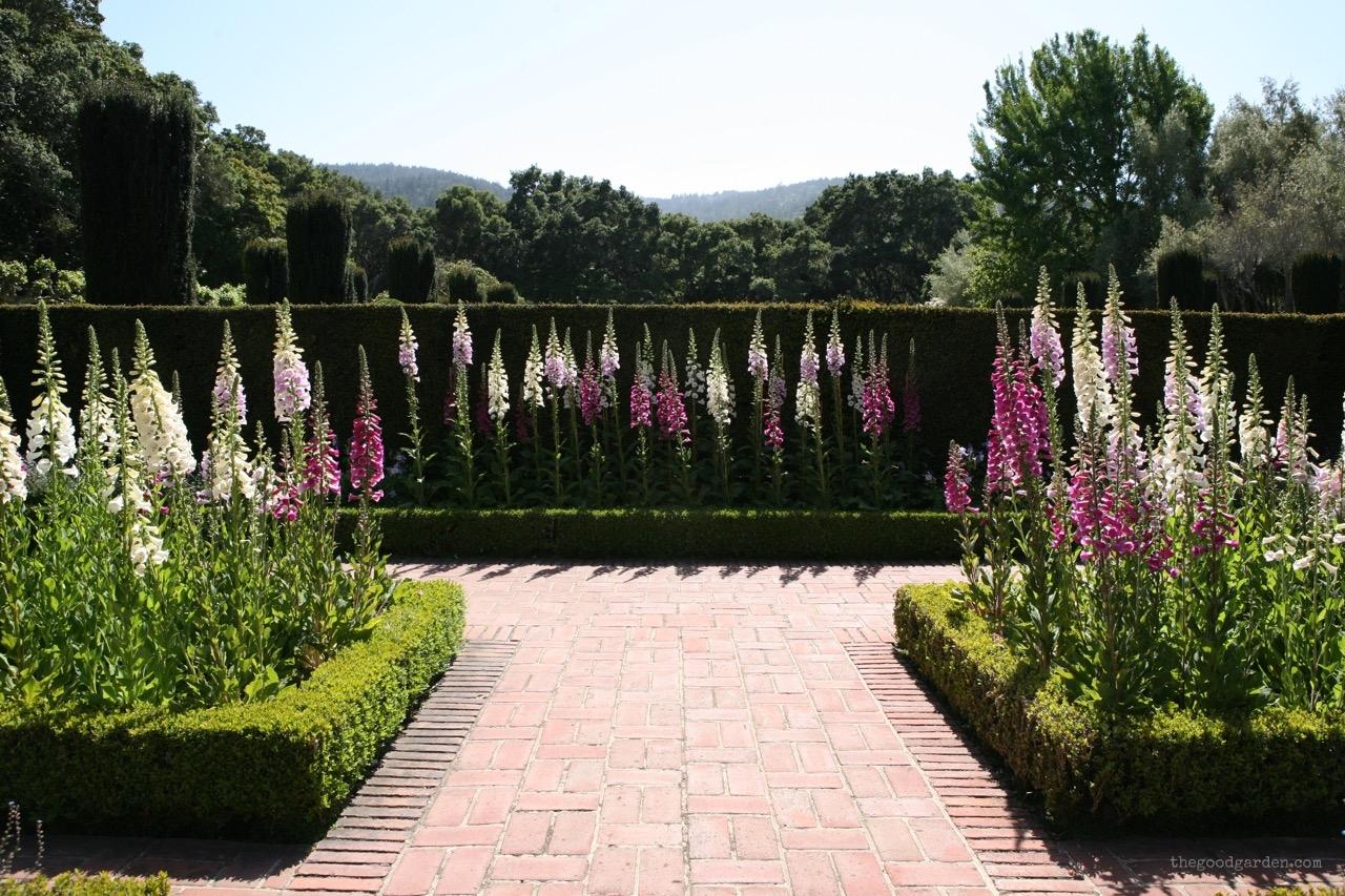 thegoodgarden|filoli|california|5373.jpg