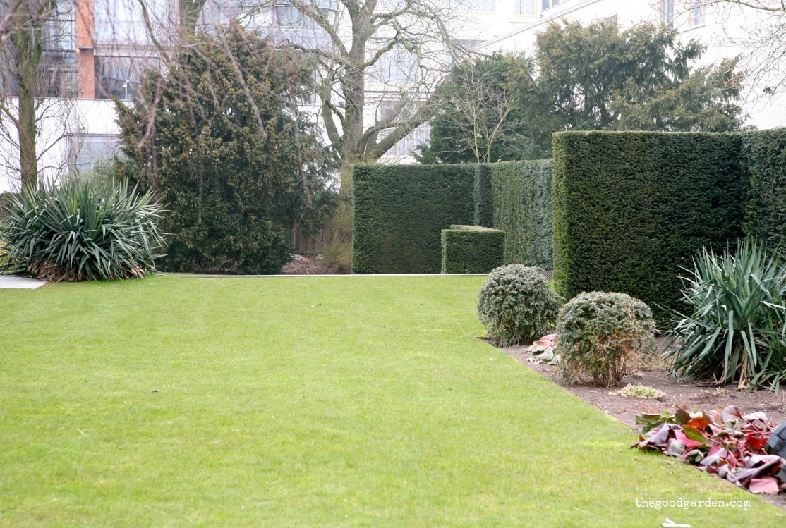 A frosty winter day highlights the structure of the side garden. Blocks and globes.