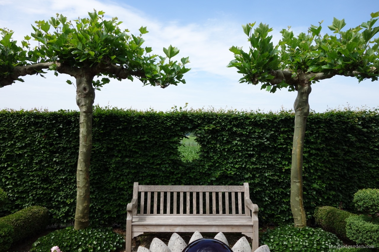 thegoodgarden|tuinzondernaam|netherlands|569.jpg