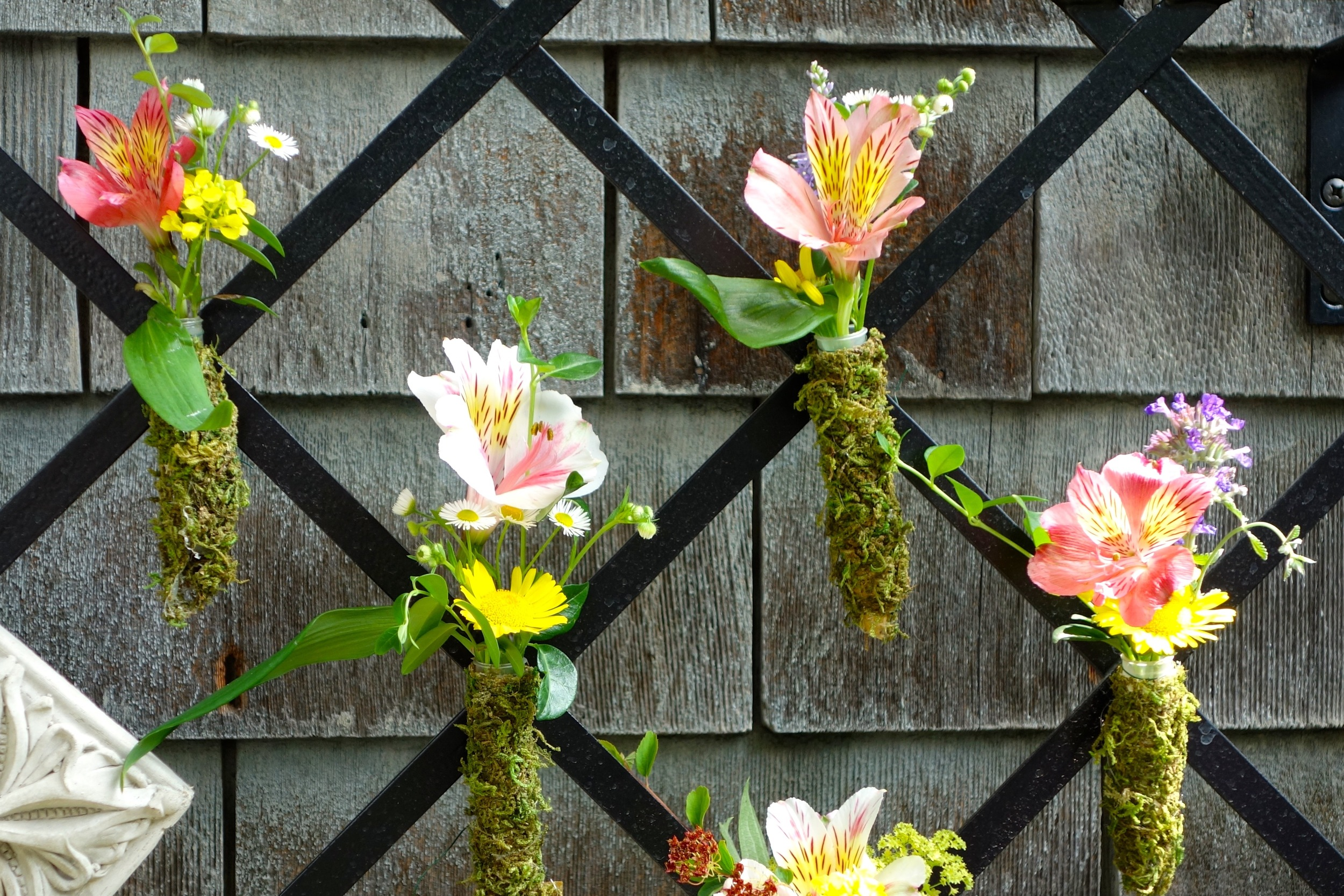 Mini bouquets including flowers from the garden adorn the trellis in the Belgian block garden.