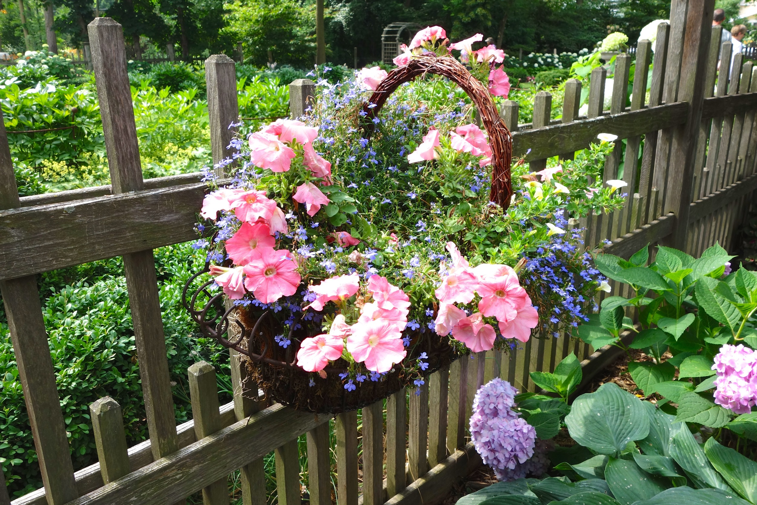 A basket of flowers hangs on the arts and crafts style wooden fence that Catherine designed.