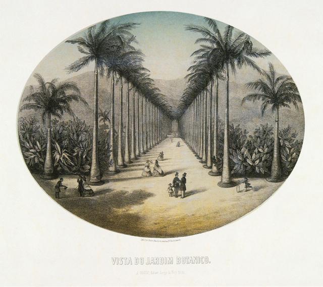 Post card circa 1856. Likely author  P. G. Bertichem. Source:  Rio.com
