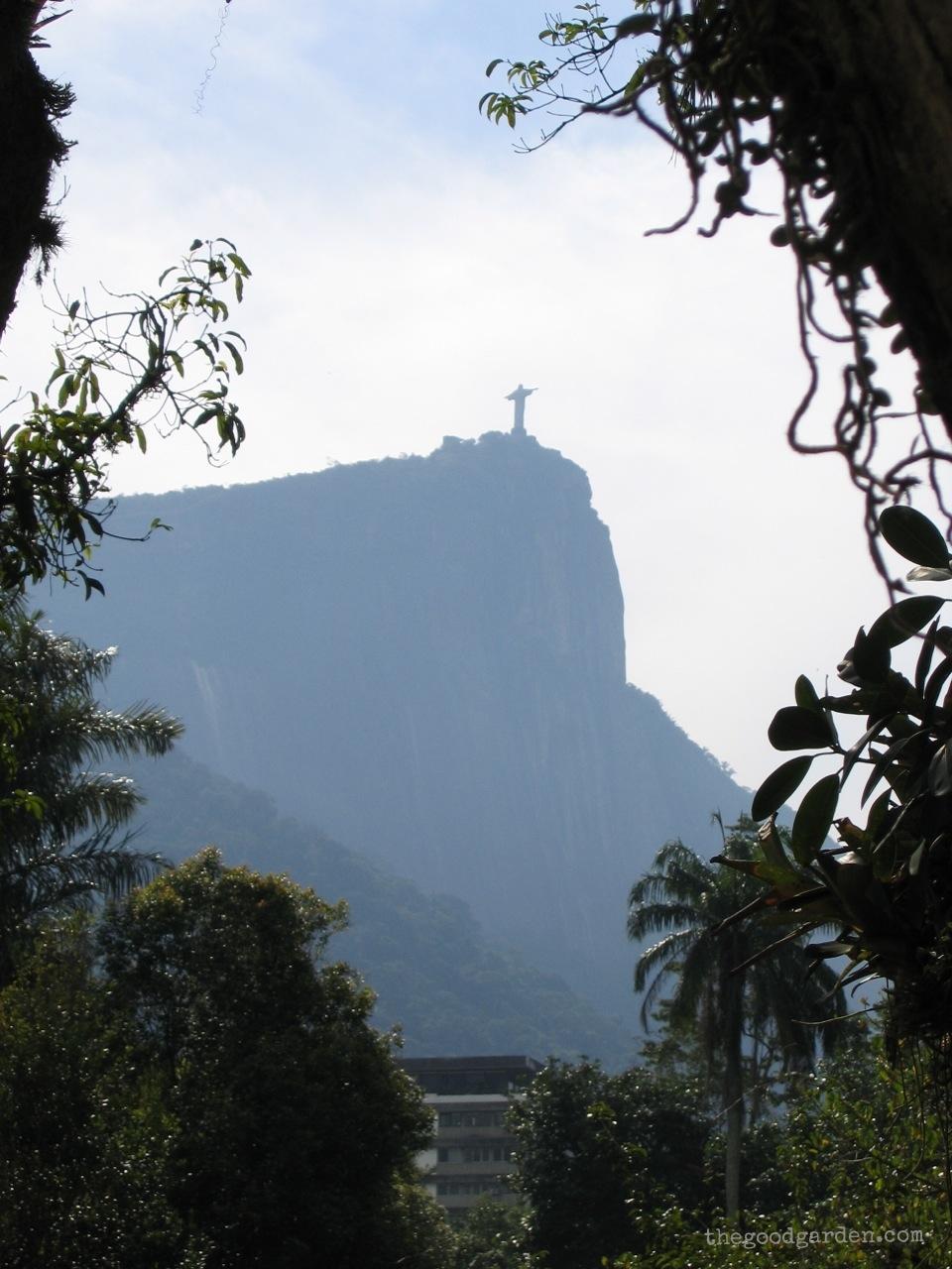 thegoodgarden|brazil|riodejaneiro|garden|927.jpg