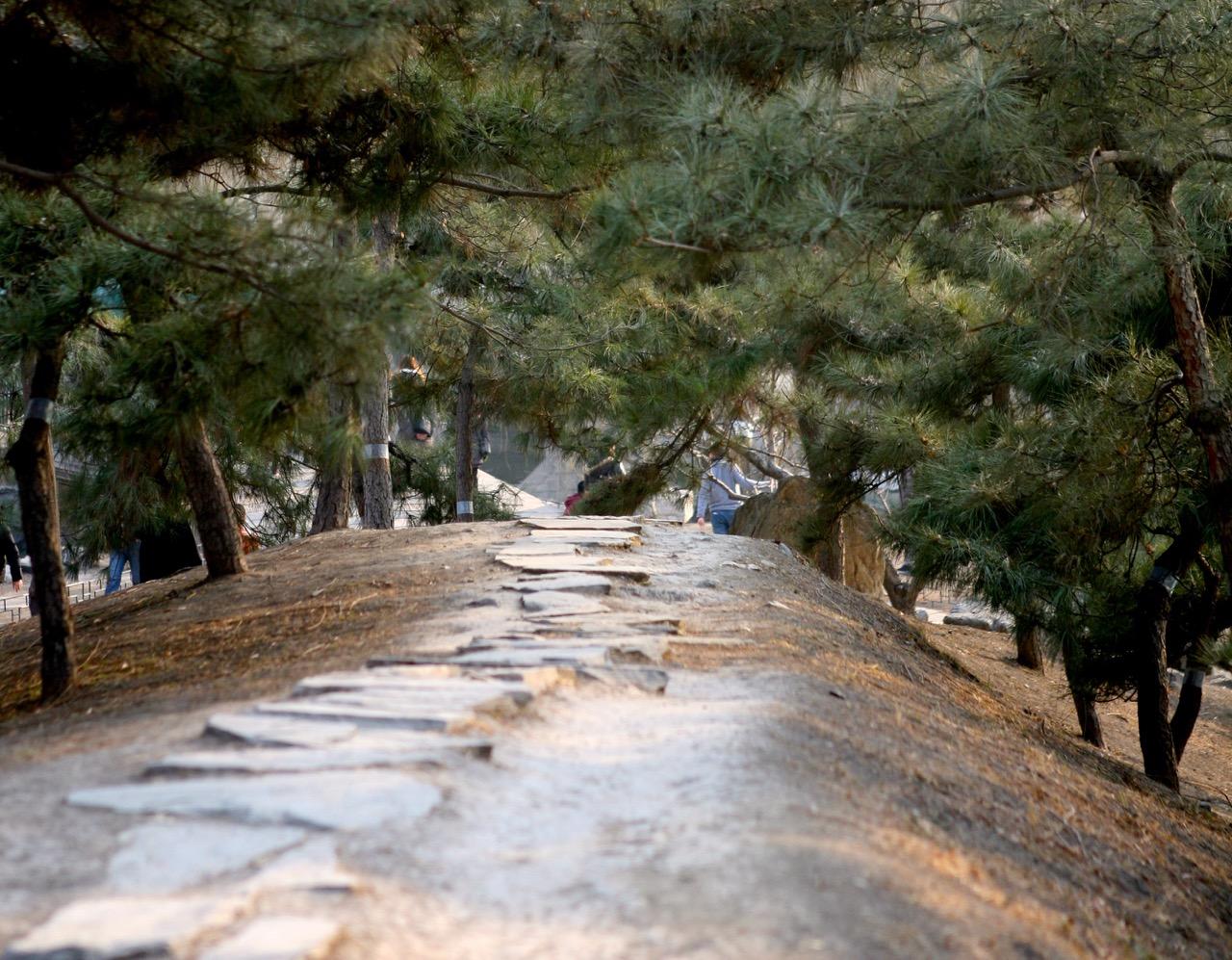 thegoodgarden|oldsummerpalace|china|davidcalle|2484.jpg