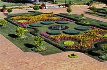 9_2_018_0235-Tuynhuis_Gardens1-Cape_Town-s.jpg