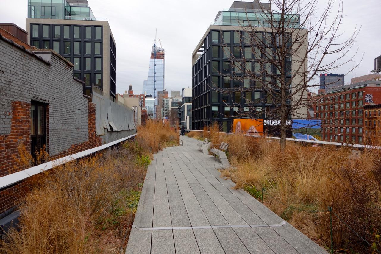 thegoodgarden|highline|NYC|davidcalle|8619.jpg
