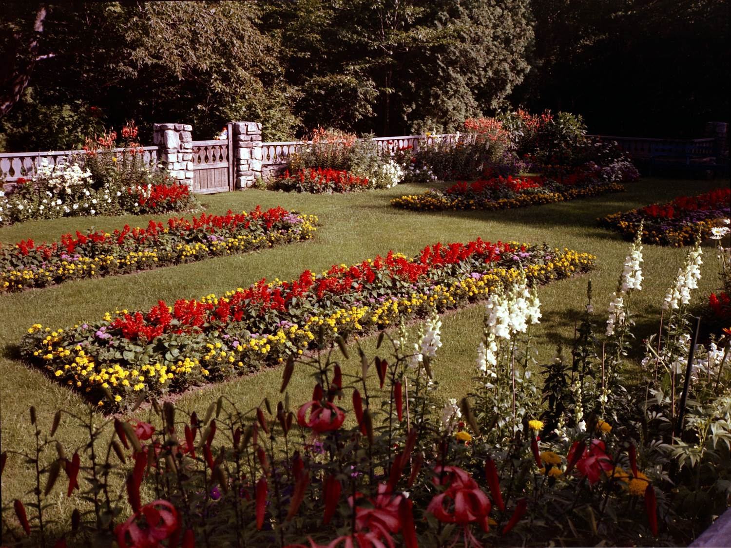 The garden was designed as a space to view tennis matches in the nearby grass courts. In the 1950's, the garden was planted with annual flowers. Source: Lawrence University.