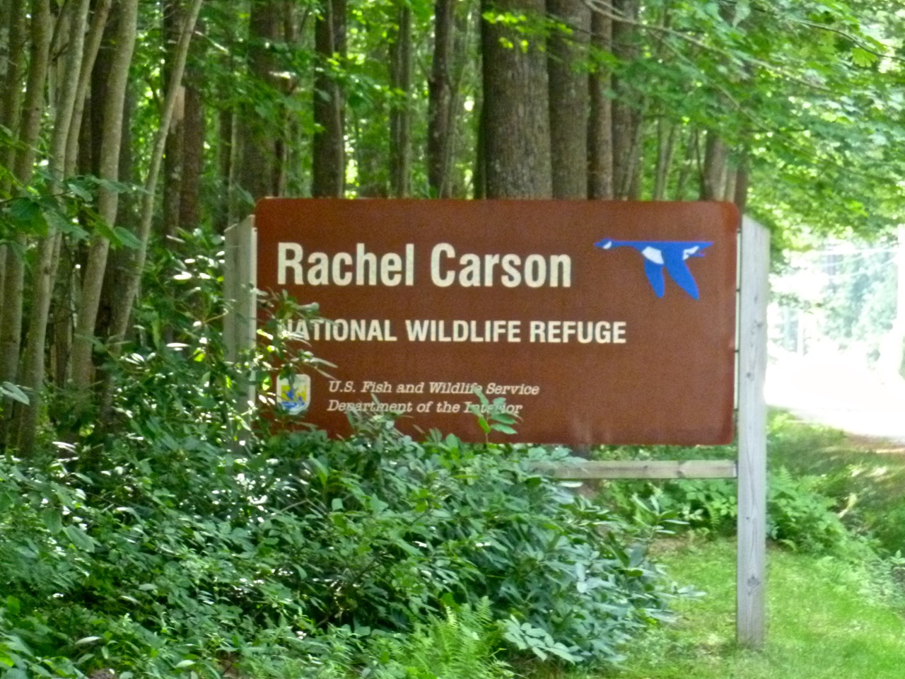 A sign marks the entrance to the 1-mile Rachel Carson Trail. The walk guides visitors through many of the ecosystems that comprise the southern Maine shoreline and that inspired Carson.