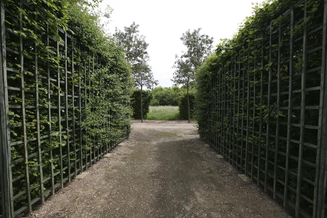 thegoodgarden|Versailles|formal|8563.jpg