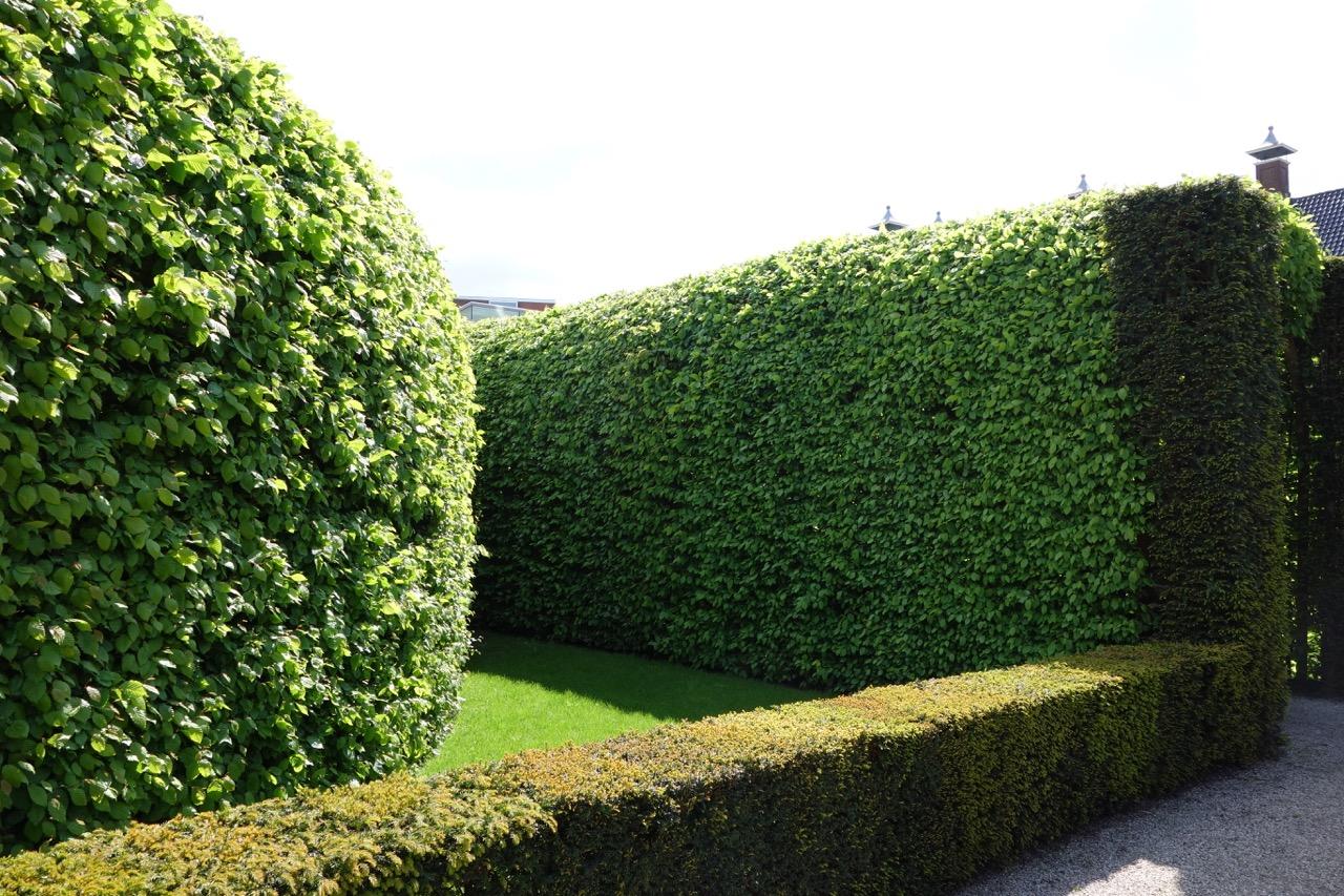 thegoodgarden|groningen|cloister||02222.jpg