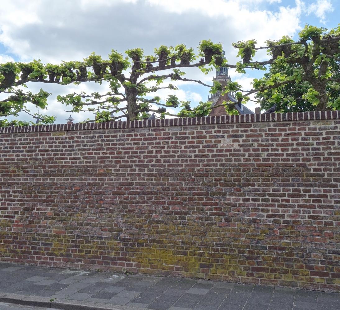 thegoodgarden|groningen|cloister||02285.jpg