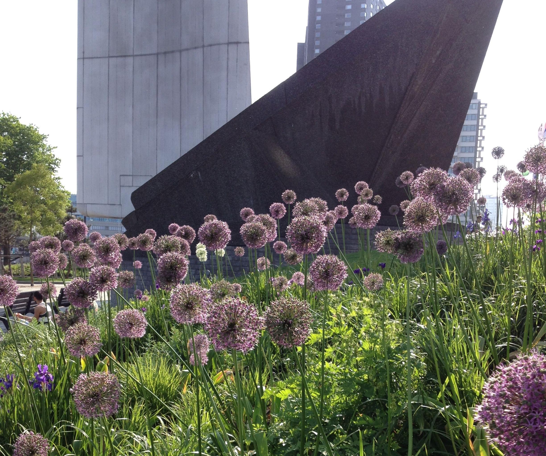 thegoodgarden|Rotterdam|MaasRiverfront|2565.jpg