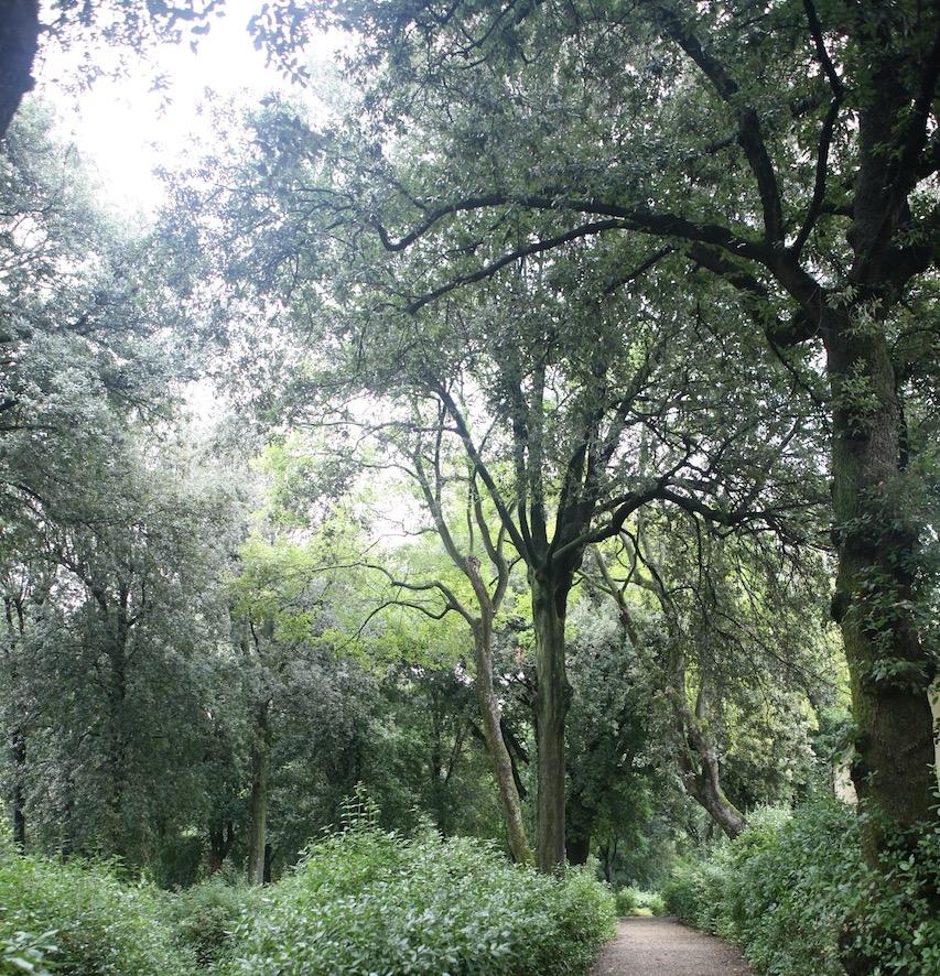 thegoodgarden|bardini|florence|0346.jpg