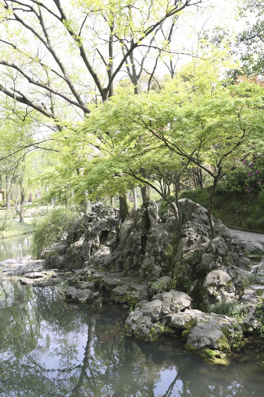 thegoodgarden|Suzhou|humbleadministratorsgarden|4990.jpg