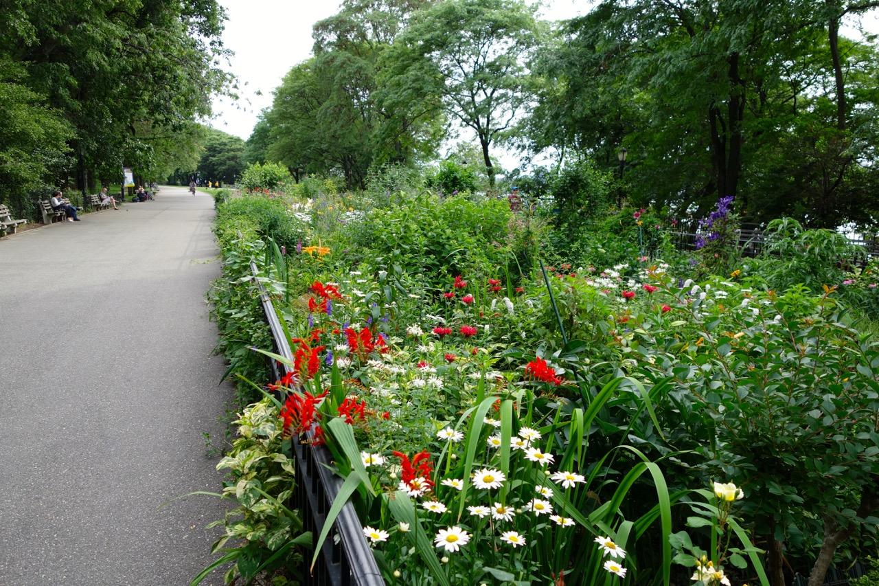 thegoodgarden|davidcalle|riversidepark|gardenpeople03509.jpg