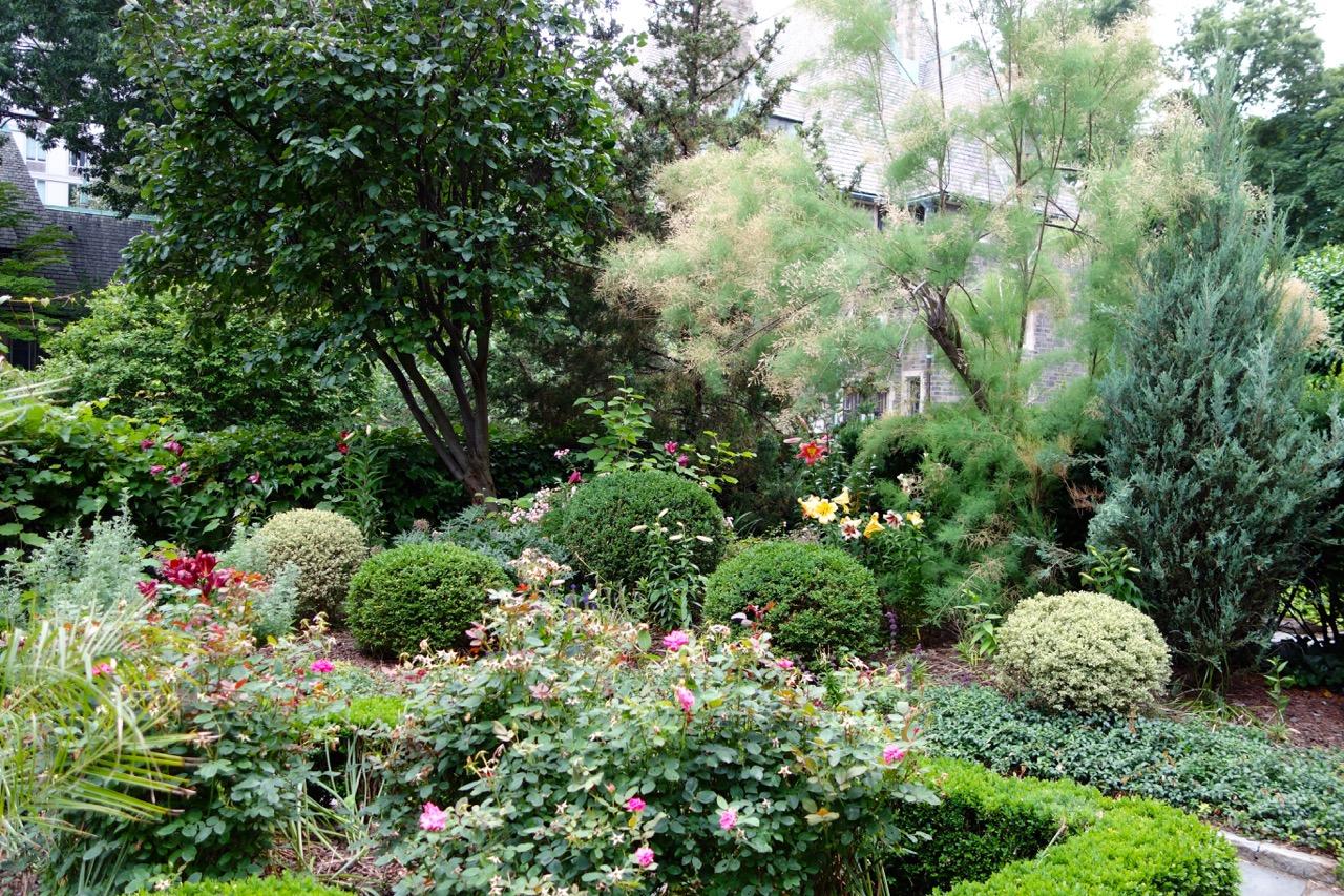thegoodgarden|davidcalle|stjohndivine|biblicalgarden03626.jpg