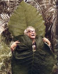 Roberto Burle Marx was a strong supporter of the environment and advocated for the appreciation of native plants.