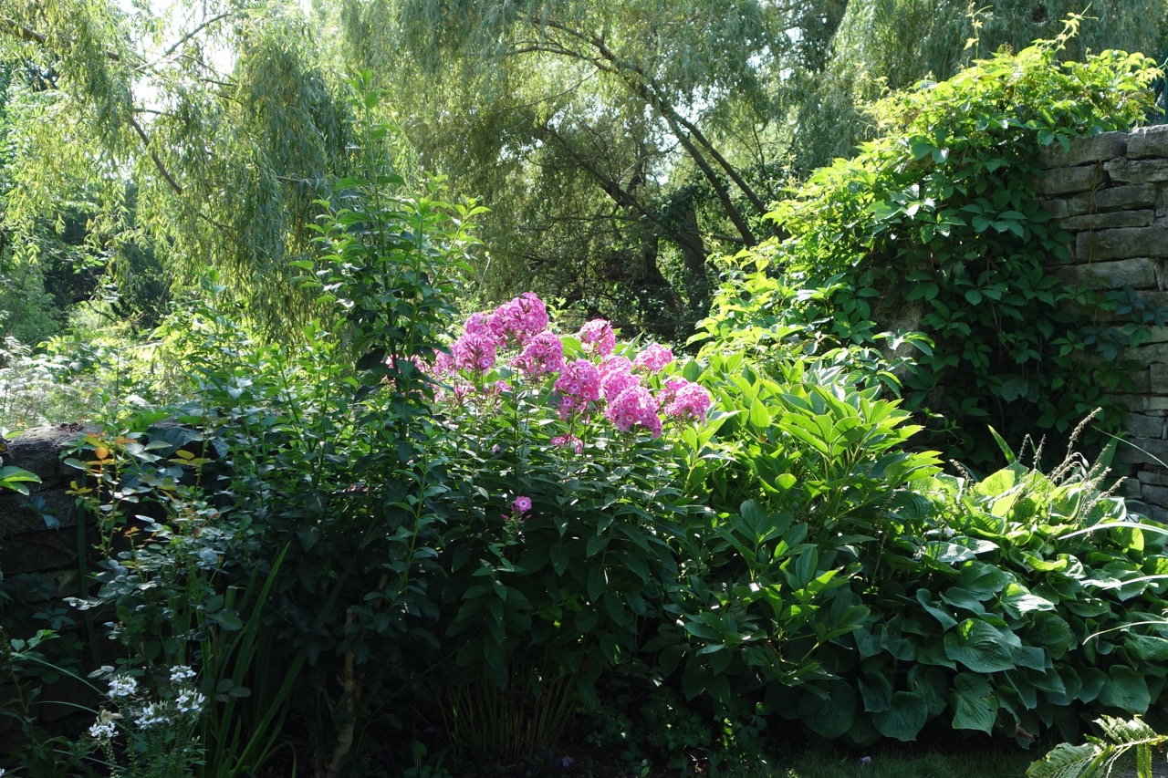 thegoodgarden|davidcalle|kohler|riverbend|04939.jpg