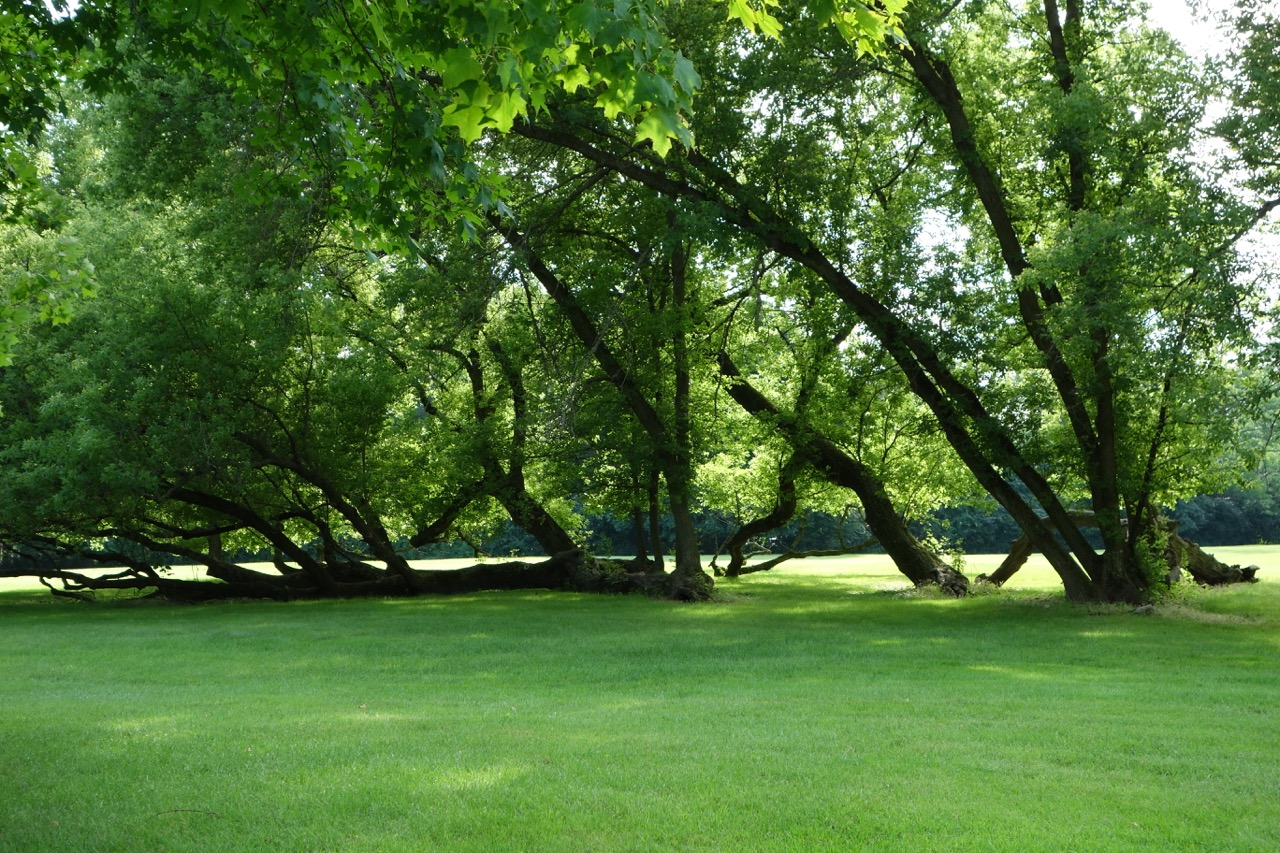 thegoodgarden|davidcalle|kohler|riverbend|05036.jpg
