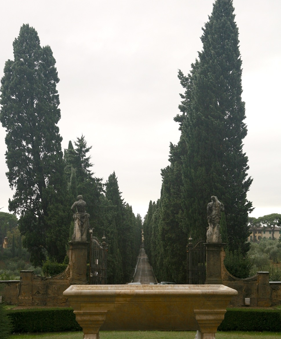 An avenue of cypress line the entry, marking the transition between the outside world and garden.