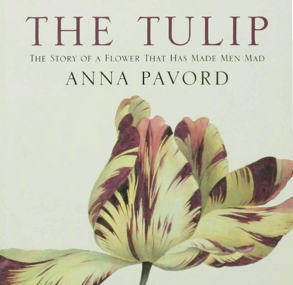 Anna Pavord takes us on a journey from Turkey to England; from Leiden, Holland to Holland, Michigan.  This delightful book looks at history through this amazing flower - with wonderful illustrations that reflect evolving aesthetics.  The perfect read as tulip planting season is upon us!