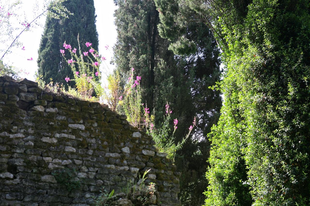 thegoodgarden|ninfa|sermoneta|4591.jpg