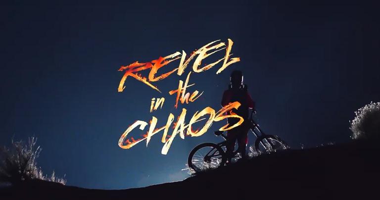 revel-in-the-chaos.jpg