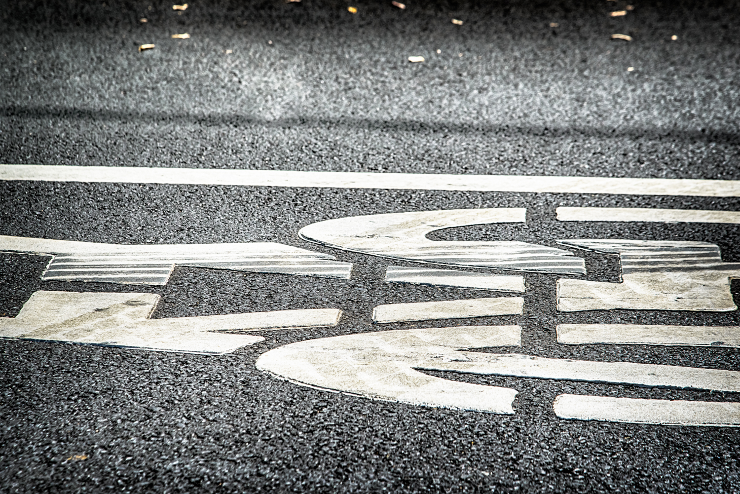 ©Carson Blume   Tire marks already show wear and tear on shared lane marking only a few weeks new.