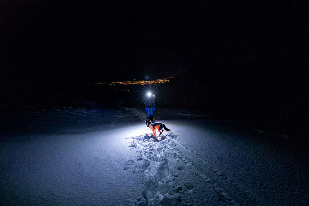 20181228-0101-Tromsø-FotografMadsSuhrPettersen-3I0A3877.jpg