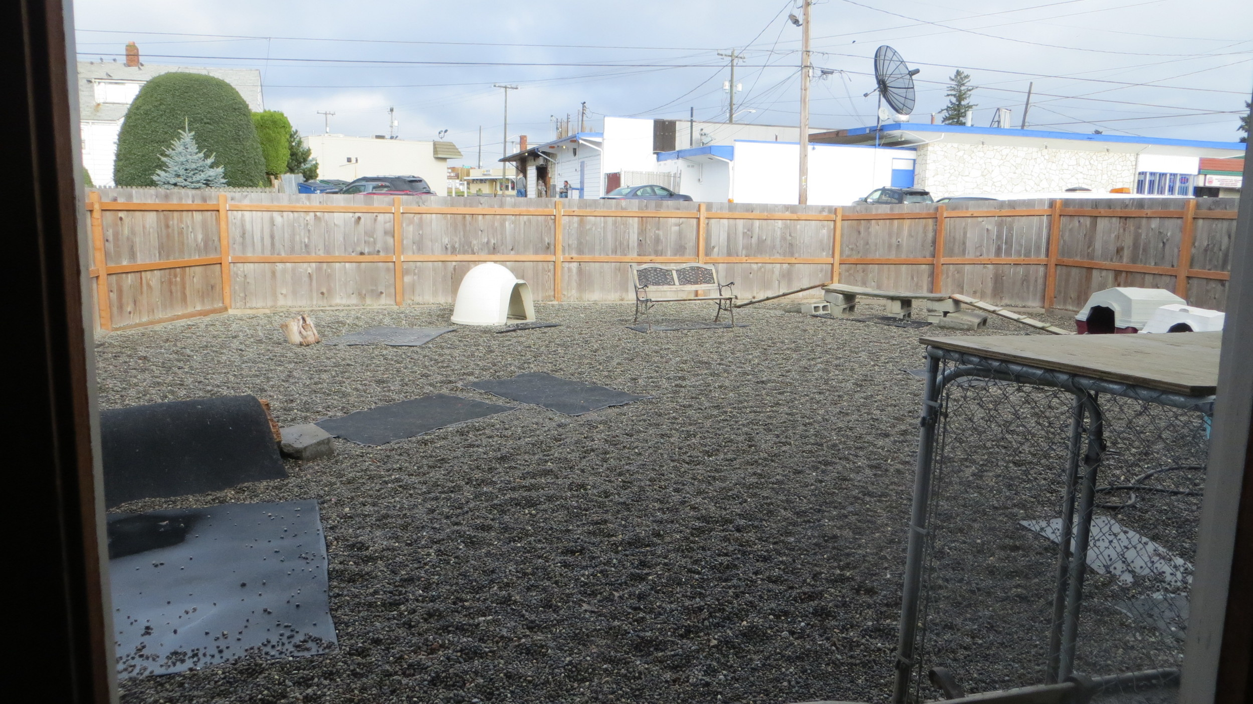 Paws & Relax  outdoor play area