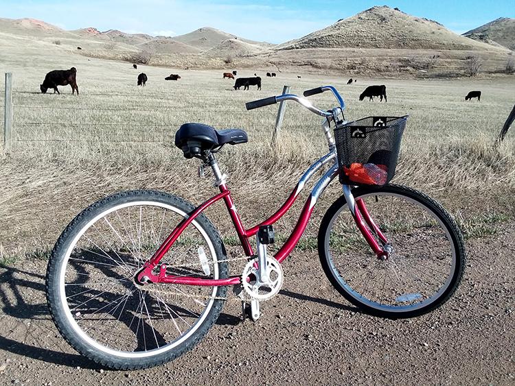 Day 2 Bike.jpg