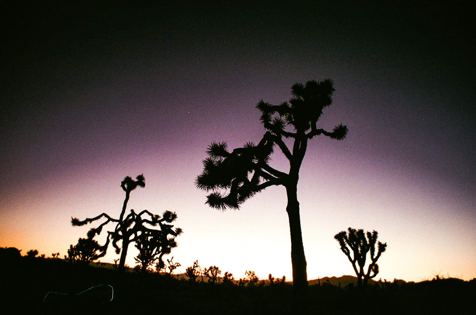 35mm015.jpg
