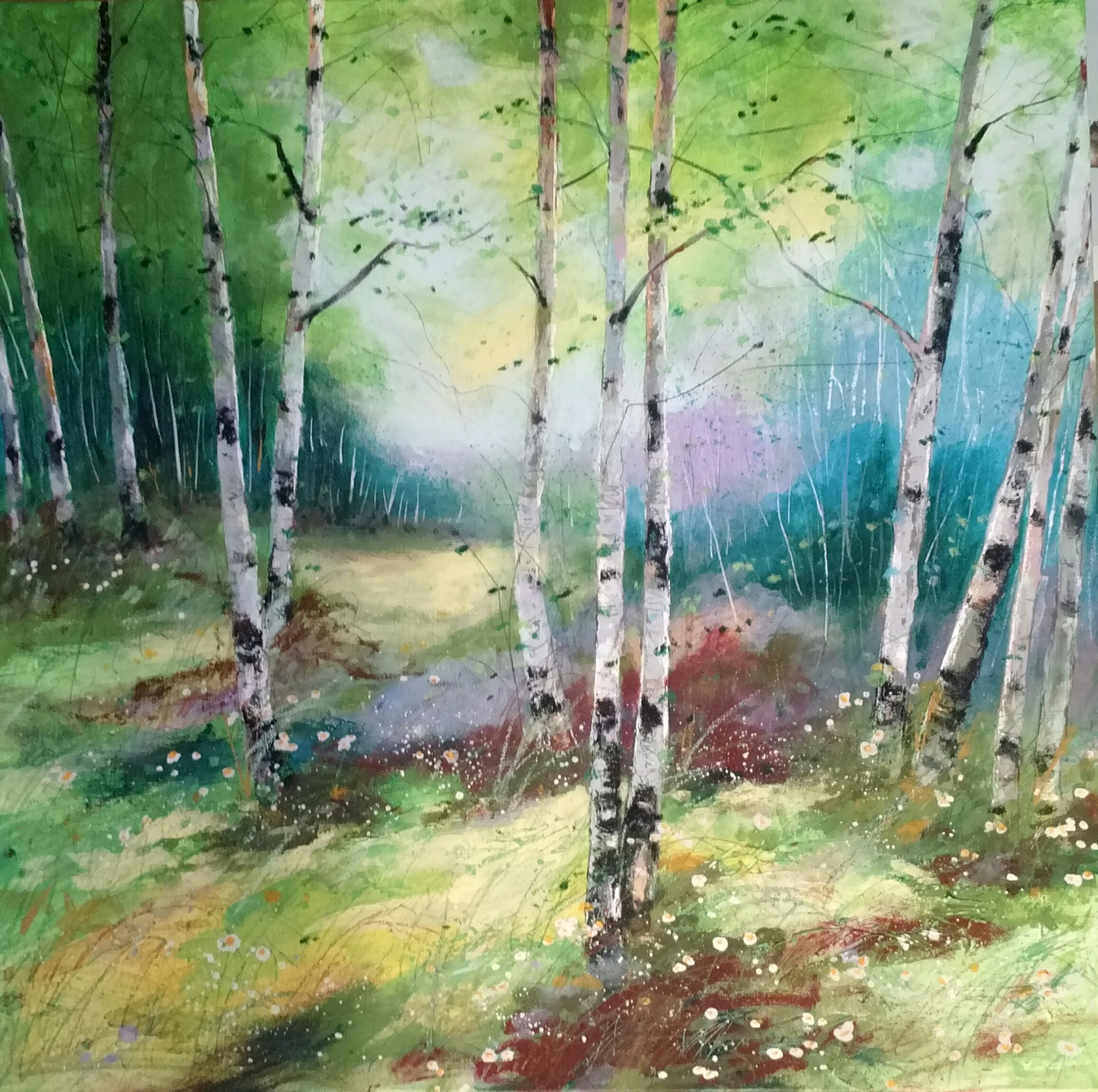 Birch Spring Magic - 24 x 24 on gallery wrapped canvas for sale
